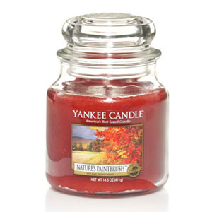 Yankee Candle Housewarmer Nature`s Paintbrush Jar