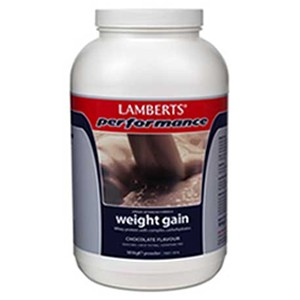 Lamberts Weight Gain Chocolate
