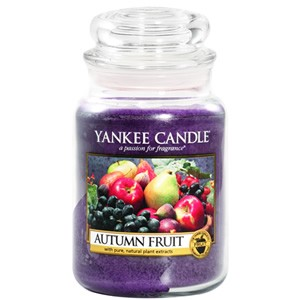 Yankee Candle Housewarmer Autumn Fruit Jar Medium