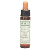 Dr Bach Red Chestnut Bach Flower Remedy