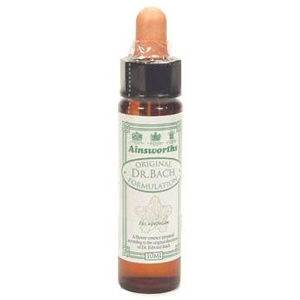 Dr Bach Sweet Chestnut Bach Flower Remedy