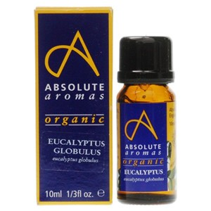 Absolute Aromas Organic Eucalyptus Globulus